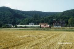 """<p style=""""text-align:center"""">219 in Remschütz mit RB nach Saalfeld, August 1994 <br><br>Foto: Jens Ruttke</p>"""
