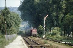 """<p style=""""text-align:center"""">204 834 mit Wendezug nach Naumburg in Uhlstädt, August 1994 <br><br>Foto: Jens Ruttke</p>"""